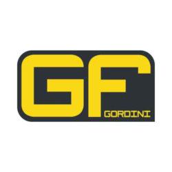GF Gordini
